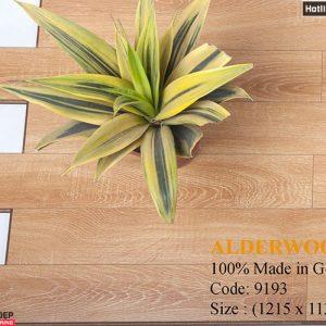 sàn gỗ ALDER 9193