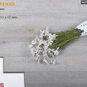 sàn gỗ ALDER 9198